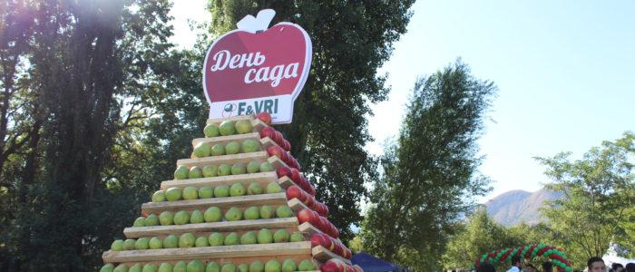 """День сада - """"Семиречье - родина яблок"""" прошел в Алматинской области"""