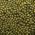 [:ru]Особенности выращивания сои в Казахстане[:kk]Қазақстанда сояны өсіру ерекшеліктері туралы[:]